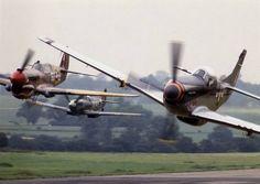 P-40 Spitfire Mustang P51
