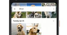 Google Photos now recognizes your pets  ||  Breaking mews from Google https://www.theverge.com/2017/10/16/16483542/google-photos-recognize-pets?utm_campaign=crowdfire&utm_content=crowdfire&utm_medium=social&utm_source=pinterest