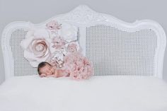 Newborn Photography with paper flowers- Paper Flowers for Nursery - Wall decor with Paper Flowers Large Paper Flowers, Paper Flower Wall, Paper Flower Backdrop, Colour Field, Paper Leaves, Flower Nursery, The Blushed Nudes, Leaf Coloring, Hydrangea Flower