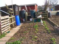 Allotment Garden Blog Allotment Gardening, March, Gardens, Community, Blog, Tuin, Garden, Formal Gardens, Mars