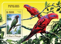 Post stamp São Tomé and Príncipe ST 14515 bParrots (Chalopsitta sintillata)