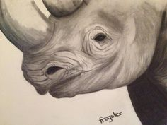 'Critically endangered' charcoal art by 'frogster'