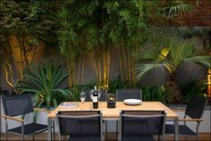 I like the combination of different plants and lighting... Table/chairs are a bit plain for the setting.