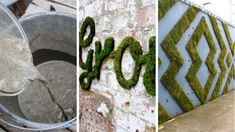 Check out this awesome new trend of moss graffiti. Cool Diy Projects, Garden Projects, Moss Graffiti, Wall Design, Curb Appeal, Create Your Own, Loft, Inspired, Cool Stuff