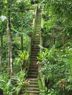 myinnerlandscape:  Paronella Park, Queensland, Australia