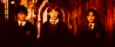 Click on the pin to read Potterheads thoughts about the epilogue...