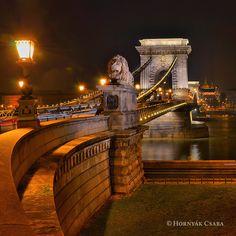 Széchenyi Lánchíd, Budapest by Hornyák Csaba, via Budapest Hungary, Tower Bridge, Bridges, City, Travel, Bridge, Viajes, Cities, Destinations