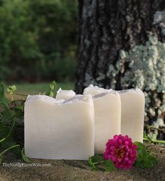 Garden-Mint-Soap-930x1024.jpg (736×810)