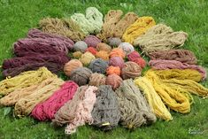 my hand dyed yarn, with mushrooms and plants