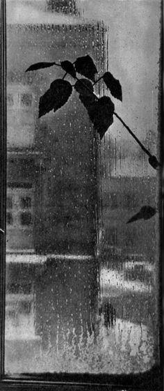 Rain```(♥) Baltic Fall, 1964 by Michael Rebi Rainy Night, Rainy Days, Black N White Images, Black And White, Smell Of Rain, I Love Rain, Rain Go Away, Under The Rain, Singing In The Rain