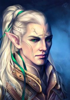m High Elf Ranger Med Armor portrait Elfo