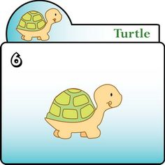 How To Draw the Turtle – Step by Step for Kids
