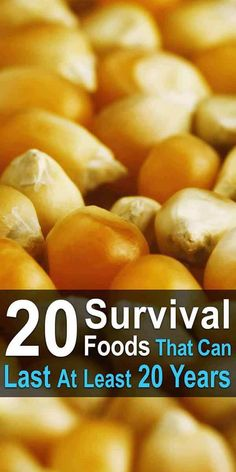 20 Survival Foods That Cn Last At Least 20 Years. As long as you take the right precautions, these 20 will last at least 20 years, allowing you to ride out any disaster without going hungry. Urban Survival, Homestead Survival, Wilderness Survival, Survival Knife, Survival Prepping, Emergency Preparedness, Survival Gear, Survival Skills, Survival Hacks