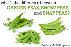 The Difference Between Garden Peas, Snow Peas, and Sugar Snap Peas - Produce Made Simple