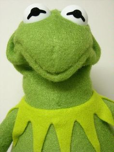 Kermit doesn't approve of your tomfoolery and shenanigans.