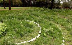 """Life Paths"" by Heather Greig - JoziLandArt November 2014"
