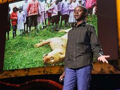 TED Talk Subtitles and Transcript: In the Maasai community where Richard Turere lives with his family, cattle are all-important. But lion attacks were growing more frequent. In this short, inspiring talk, the young inventor shares the solar-powered solution he designed to safely scare the lions away.