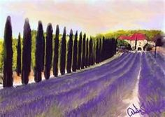 Italian Lavender Field Away We Go, European Vacation, Lavender Fields, Wonderful Places, Tuscany, Gardening Tips, Places To Go, Art Photography, Favorite Things