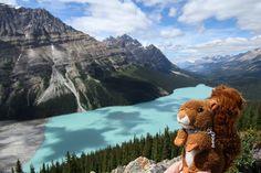 https://flic.kr/p/xmLbV9   Lac Peyto   Dexter rêvait depuis des années de venir voir de ses propres yeux le lac Peyto et il n'est pas déçu ! C'est encore plus beau en vrai, si vous pouvez le croire. ----- Dexter has been dreaming for years to go and see the spectacular Peyto lake for himself, so he is especially happy to be finally there!!! #mascot #mascotte #travelingmascot #travellingmascot #DexterLEcureuil #DexterTheSquirrel #peluche #stuffedanimal #Canada