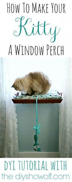 Kitty Window Perch