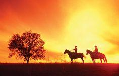 Famous for our prairies (Alberta, Saskatchewan, Manitoba).  #prairies #canada #travel