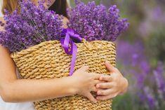 Лавандовые поля Крым   #фототур #крым #фотоинстаграм #фотозона #fotografia #море #горы #фотолаванда Фототуры в Крым #Lavender #lavender #provence #freshflowers #flowers #violet #lilac #Lilac #amethyst