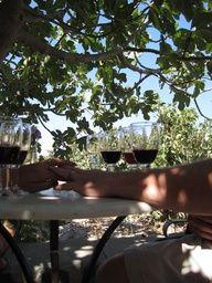 Vineyards of Paradise and Love - Santorini, Greece **Mezes Wine Bar & Greek Kitchen,  San Francisco**