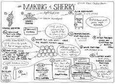 Sherry Gratefully sherry's reception in the United States has gone through a renaissance with a range of styles, and producers now available. It's a treasure of a wine offering a range … Boot Camp, Wine Infographic, Wine Tasting Near Me, Wine Coolers Drinks, Sangria Wine, Sherry Wine, Spanish Wine, Wine Baskets, Wine Pairings