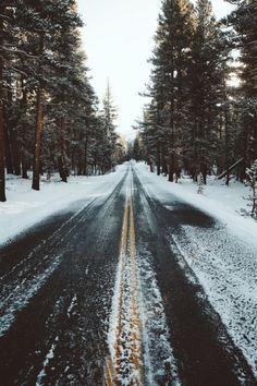 Fred a la carretera. Neu. Arbres.