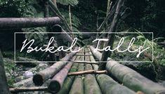 Bukal Water Falls road trip in Laguna Waterfall, Road Trip, Neon Signs, Travel, Viajes, Road Trips, Waterfalls, Destinations, Traveling