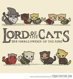 I want this as a T-shirt! Lord of the Cats!!