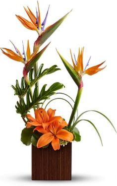 flowers: Tropical Flower Arrangements with birds of paradise and lilies beautiful