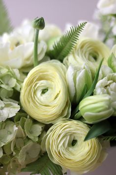ranunculus in a chic white vase: 'Cream Classic' by Winston Flowers. Ranunculus Flowers, Pastel Flowers, Bulb Flowers, Fresh Flowers, Colorful Flowers, White Flowers, Beautiful Flowers, Exotic Flowers, Pink Peonies