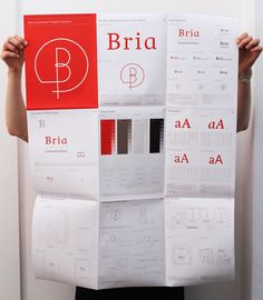 Bria Communities Brand Development [CL: The poster format is kind of interesting]