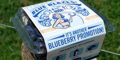 Blueberry Promotion