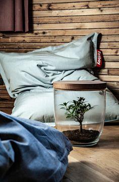 Bonsai im Tisch.🌳  Natur. Natürlich im Raum. Pflanzen. Natürlich ohne Pflege. Möbel. Natürlich nachhaltig. Bonsai, Table Decorations, Furniture, Home Decor, Home Decor Accessories, Nursing Care, Ad Home, Table, Plants