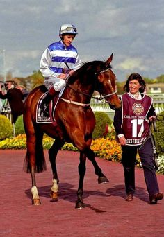 Scott Seamer aboard the NZ mare Ethereal after winning the 2001 Caulfield Cup. Queensland History of Racing