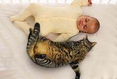 人間の赤ちゃん×ニャンコという世界で一番カワイイ組み合わせのツーショット画像20連発。 1. 2. 3. 4. 5. 6. 7. 8. 9. 10. 11. 12. 13. 14. 15. 16. 17. 18. 19. 20.