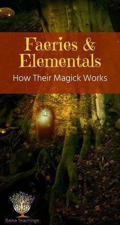 Learn about the different types of elementals, faeries and how to contact them | rainateachings #elementals #faeries #faerierealm #metaphysics