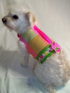 Dog Clothes Citrus Plaid Dog Harness pet by RockinDogsCoolCats, $21.95
