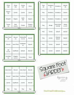 Square Foot Garden Plan for Spring