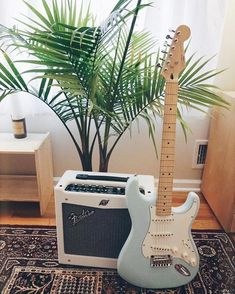 These fender bass guitars are really awesome Fender Stratocaster, Pink Floyd Comfortably Numb, Fender Guitar Case, Fender Guitars, Fender Bass, Acoustic Guitars, David Gilmour Pink Floyd, Ukulele, Music Guitar