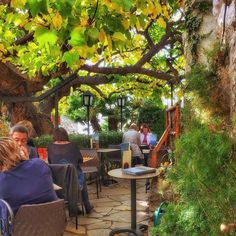 Sheltered by vines full of past conversations patios in Europe are budding for travelers.  Are you ready for some outdoor dining or drinks in Europe this year?  Tell us where.