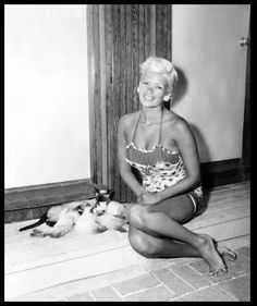 Famous people with Siamese cats