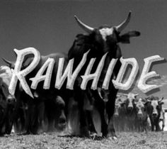 Rawhide Clint Eastywood played Rowdy Yates, and Oh did I have a crush on him!