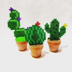 ~ Cactus perler beads ~