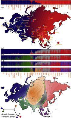 "Genetic Landscape of Eurasia and ""Admixture"" in Uyghurs — ScienceDirect"