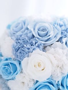 Click the link below for Tech News n Gadget Updates. Blue Aesthetic Pastel, Flower Aesthetic, Light Blue Flowers, Beautiful Flowers, Exotic Flowers, Purple Flowers, White Roses, Pink Roses, Tea Roses