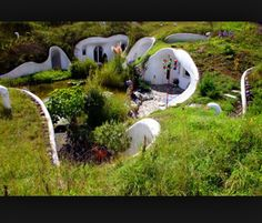 Eco hobbit holes, I could totally live in one!