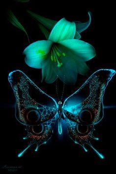 Es una hermosa mariposa,, asi es la naturaleza